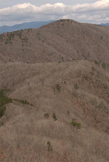 20120415-29.jpg