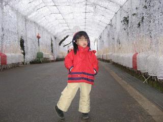 mini-IMG_4894-2007-12-01.jpg