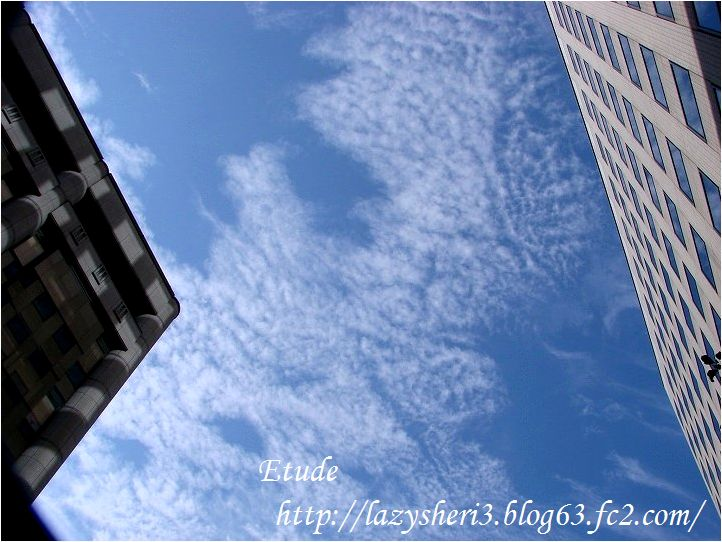 20061130-2.jpg