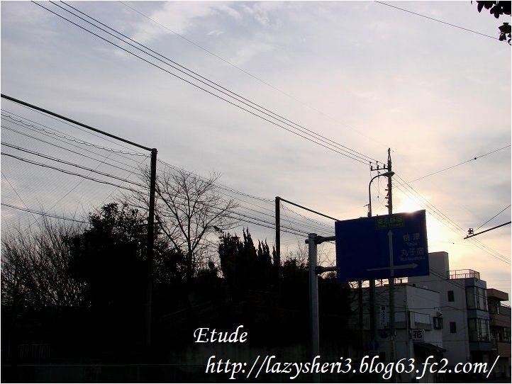 20070201-1.jpg