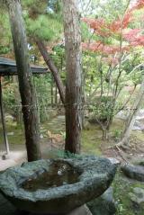 yusentei37.jpg