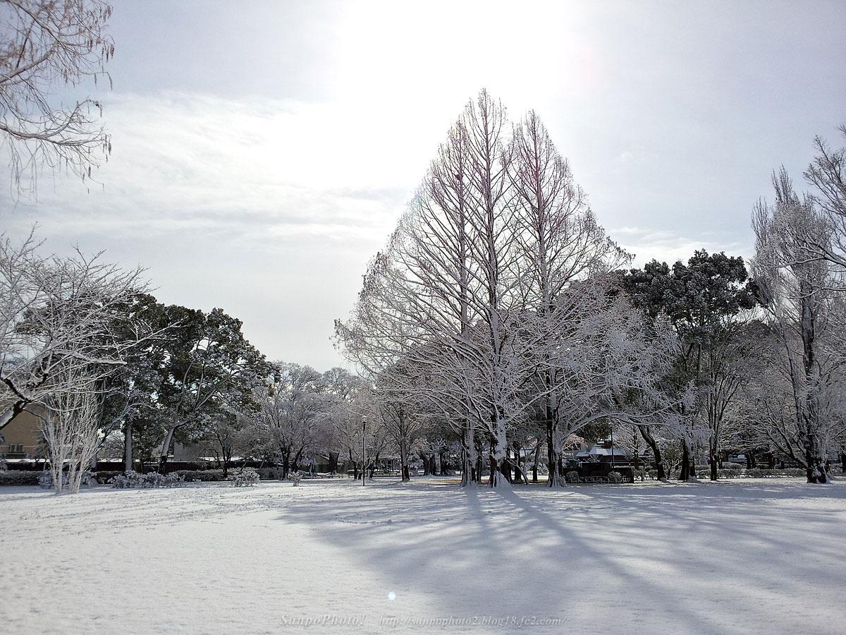 さんぽふぉと Sanpophoto 無料壁紙 冬景色